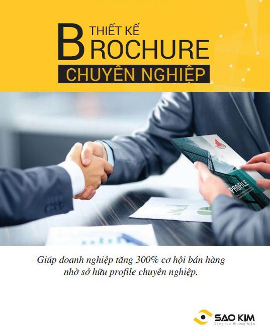 Mẫu thiết kế brochure giới thiệu khu công nghiệp Thanh Bình Phú Mỹ